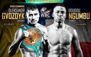 Гвоздик — Нгумбу: онлайн-трансляция долгожданного боя за пояс чемпиона WBC