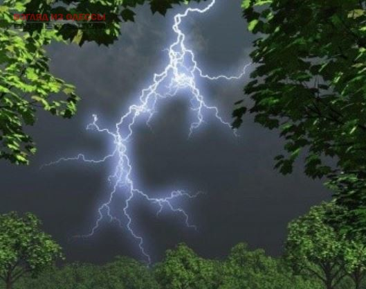 В связи с предстоящими грозами одесситам напоминают, как уберечься от молний