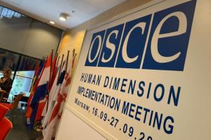 Украинская делегация покинула заседание ОБСЕ: каковы причины и стоит ли ждать их возвращения