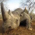 Нестор Шуфрич застрелил редкого носорога и гепарда — французские организации требуют наказания