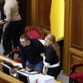 «Как два индюка бились за самку», — депутаты Власенко и Дмитрук устроили драку из-за Тимошенко, видео